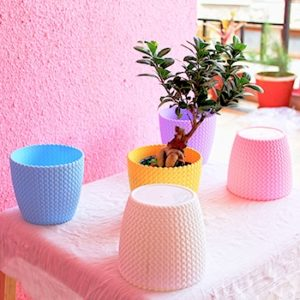 Table Top Plastic Pot for Home-Office