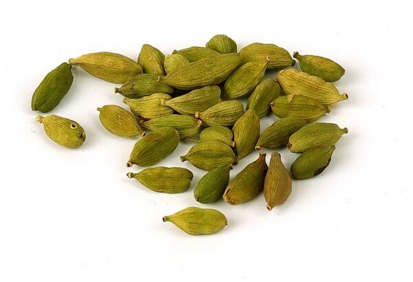 Buy Elaichi Plant – Velchi, True Cardamom online – Nursery Nisarga