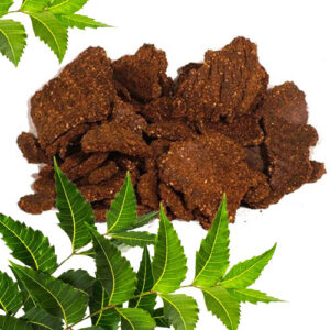 Buy Neem Khali Fertilizer - Nursery Nisarga