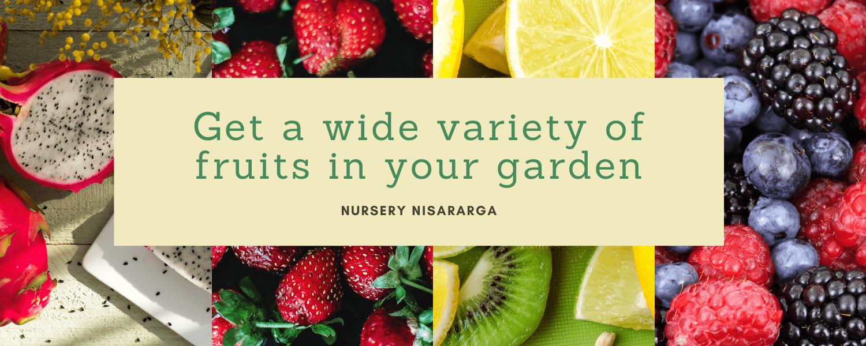 wide range of fruits