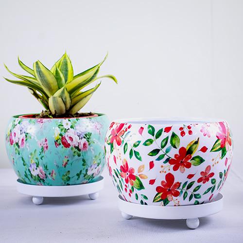 Printed Round 12cm Metal Pot/Planter