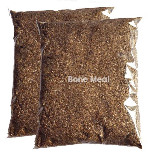 Buy Bone Meal Powder - Nursery Nisarga