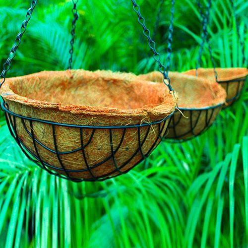 Buy Coir hanging basket - online Nursery Nisarga