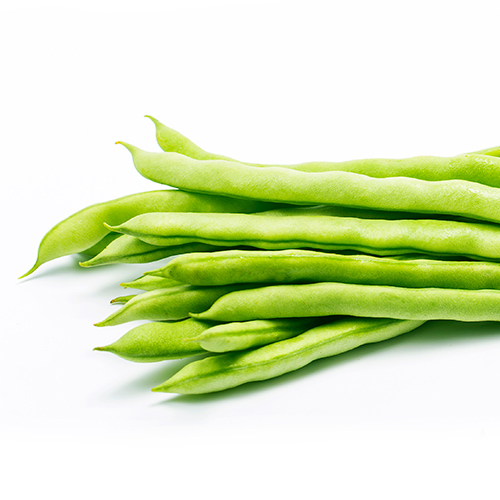 Buy French Beans Seeds - Nursery Nisarga